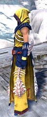 gw2-primeval-dervish-outfit-6