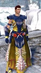 gw2-primeval-dervish-outfit-8