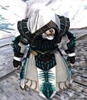 gw2-primeval-dervish-outfit-9