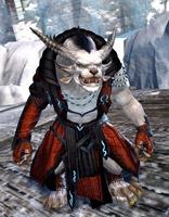 gw2-elonian-elementalist-outfit-charr