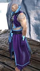 gw2-elonian-elementalist-outfit-norn-2
