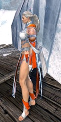 gw2-elonian-elementalist-outfit-norn-6