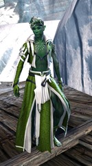 gw2-elonian-elementalist-outfit-sylvari-5