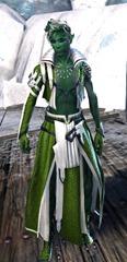 gw2-elonian-elementalist-outfit-sylvari-8