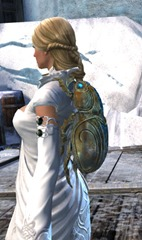gw2-jeweled-scarab-package-2