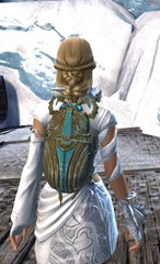 gw2-jeweled-scarab-package