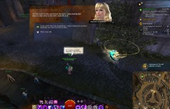 gw2-coalesence-ii-the-gift-collection-guide-9