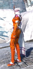 gw2-zafirah's-tactical-outfit-fnorn-2