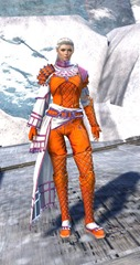 gw2-zafirah's-tactical-outfit-fnorn-4
