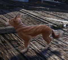 gw2-pet-dog-whistle-basenji-2