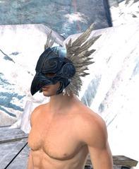 gw2-raven-helm-mantle-5