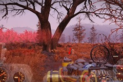 fallout-76-cranberry-bog-treasure-maps-guide-8