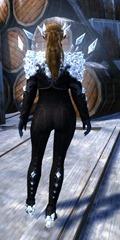 gw2-gem-aura-outfit-fnorn-3