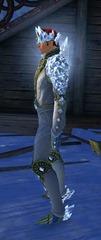 gw2-gem-aura-outfit-hmale-2