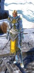 gw2-logan's-pact-marshal-outfit-hfemale-4
