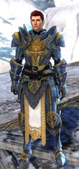 gw2-logan's-pact-marshal-outfit-hmale-4