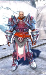 gw2-logan's-pact-marshal-outfit-norn-4