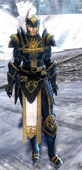 gw2-logan's-pact-marshal-outfit-norn-5