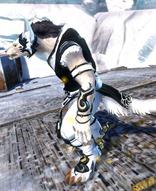 gw2-shrine-guardian-outfit-charr-2