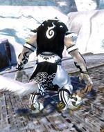 gw2-shrine-guardian-outfit-charr-3