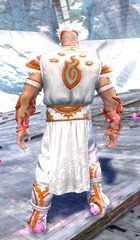 gw2-shrine-guardian-outfit-nornmale-3