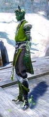 gw2-shrine-guardian-outfit-sylvarimale-2