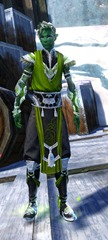 gw2-shrine-guardian-outfit-sylvarimale-4