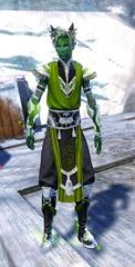 gw2-shrine-guardian-outfit-sylvarimale