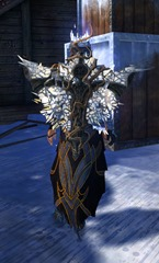 gw2-defiant-glass-backpack-2