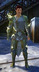 gw2-defiant-glass-outfit-hmale-4