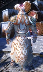 gw2-defiant-glass-outfit-mnorn-3