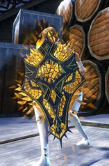 gw2-defiant-glass-shield-skin-3