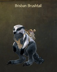 gw2-exotic-breeds-mount-select-license-9