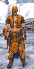 gw2-ritualist-outfit-hmale