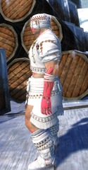 gw2-ritualist-outfit-nmale-2