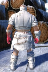 gw2-ritualist-outfit-nmale-3