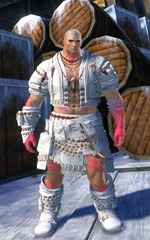 gw2-ritualist-outfit-nmale-4