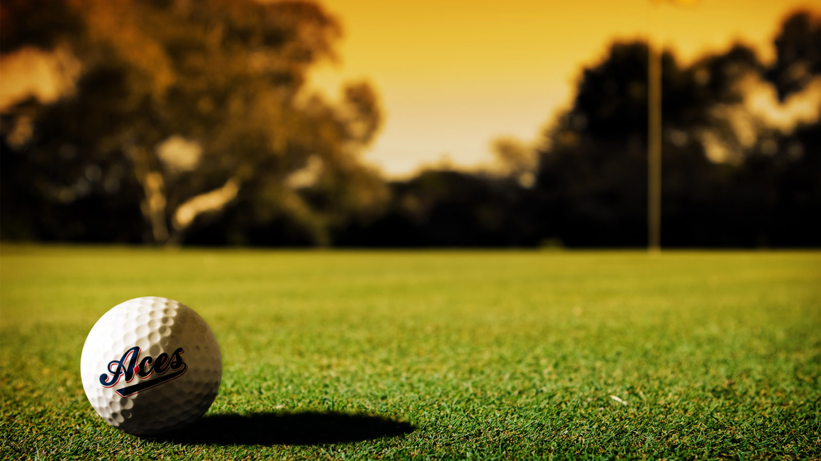 Header Image for Aces Golf - April 5th