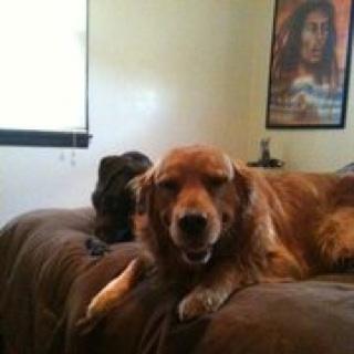 G-Funk&Reddogg