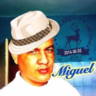 Miguel Arturo Hernandez Duluc
