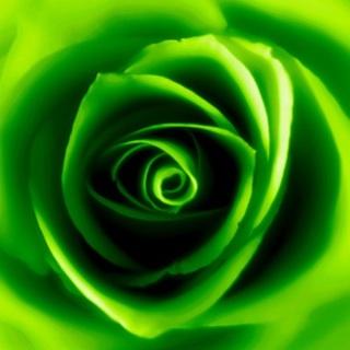 Green 123