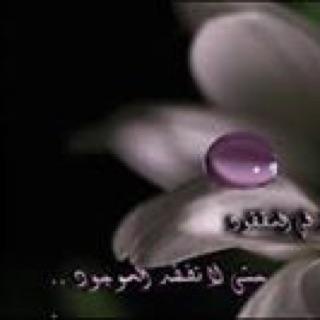Eman Imbaby