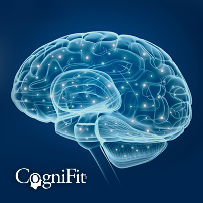 Brain and Neuroplasticity, Neurogenesis, and Cognition