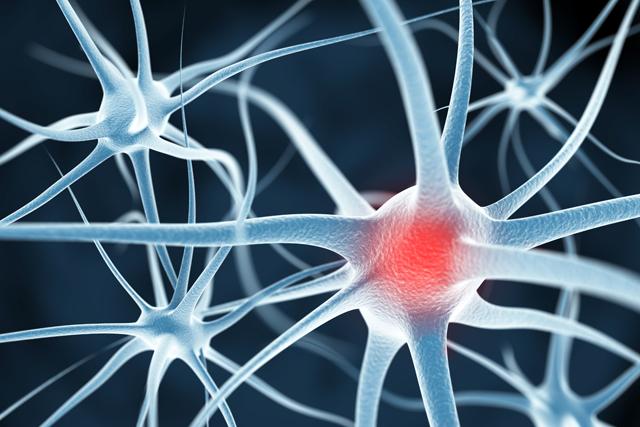 Hersenplasticiteit