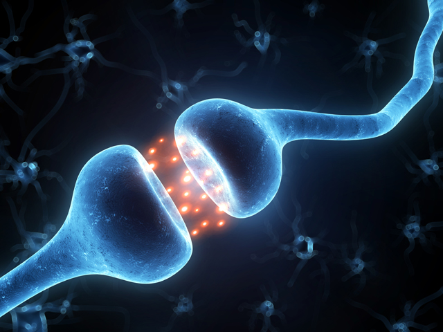 Neuroplasticity and Cognition