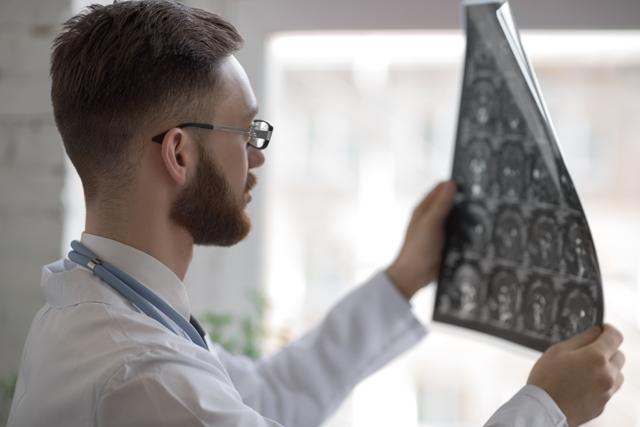 تطوّر الدماغ البشريّ