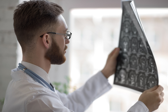 Развитие головного мозга человека