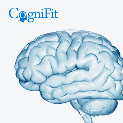 Memory-Mental Process: How does the brain store memories? - CogniFit