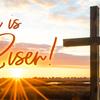 Easter-memes-2018-risen-sea-1200-thumb