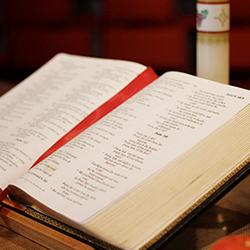 WEDNESDAY BIBLE SHAPING CLASS